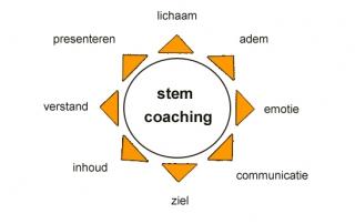stemcoaching
