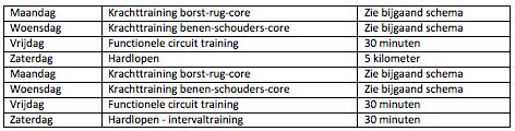Trainingsschema hormoonfactor 1