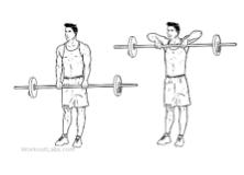 Trainingsschema hormoonfactor 12