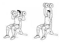 Trainingsschema hormoonfactor 14