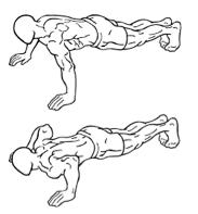 Trainingsschema hormoonfactor 2