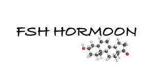 fsh hormoon