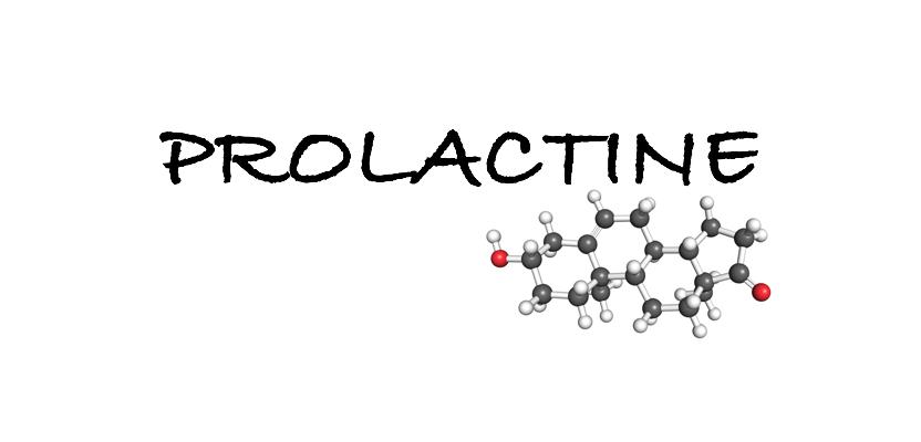 prolactine hormoon