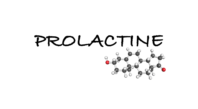 prolactine hormoon