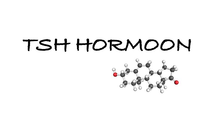 tsh hormoon