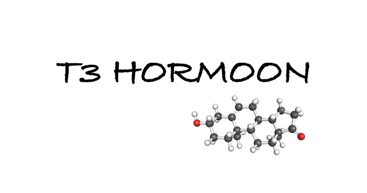 T3 hormoon