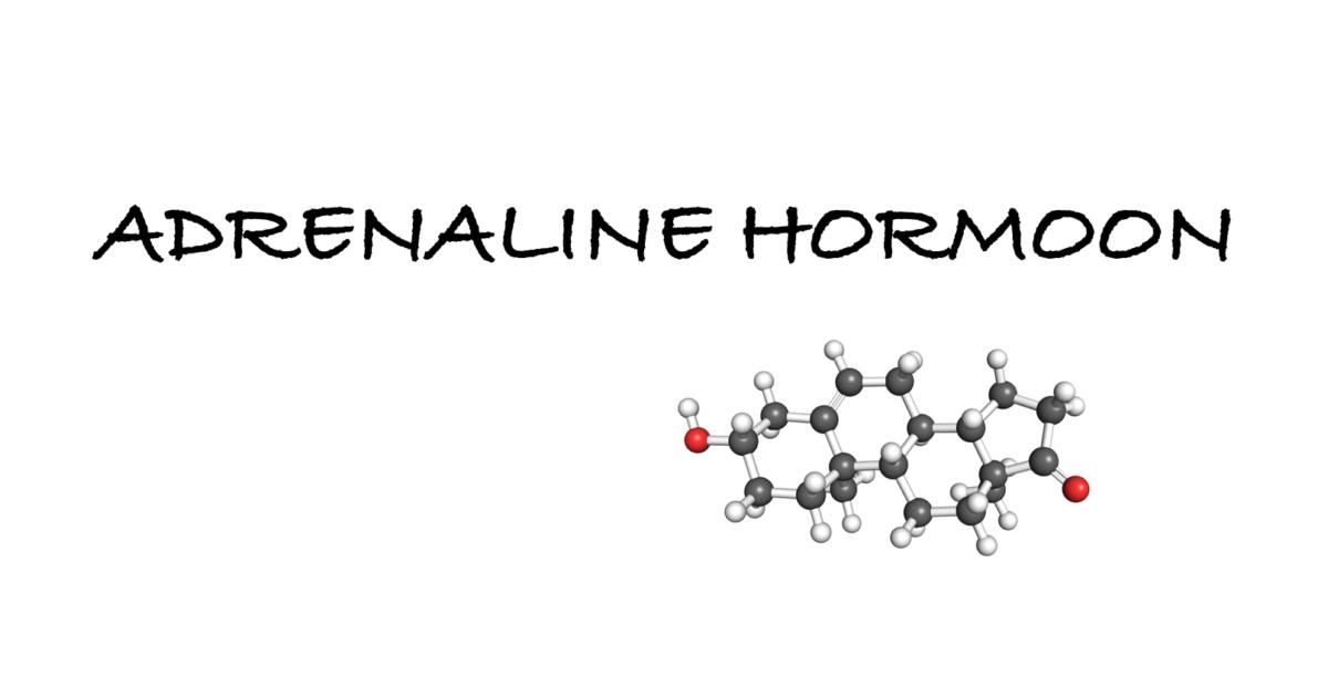 adrenaline hormoon